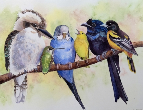 Birds of All Colors
